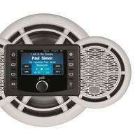 Polk DSP (Photo: ASA Electronics)